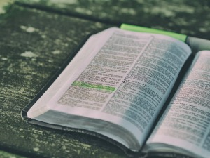 Bible Scriptures of the Day